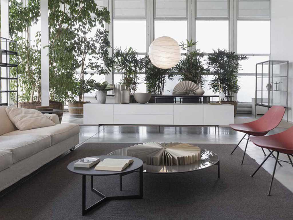 Piante Da Arredo Appartamento le piante arredano la casa | la casa in ordine