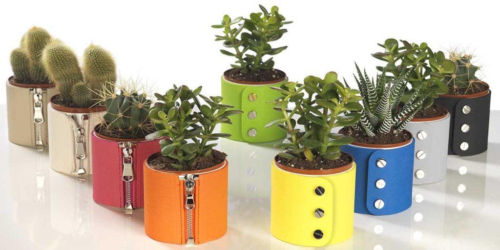 vasi piante casa rivestiti