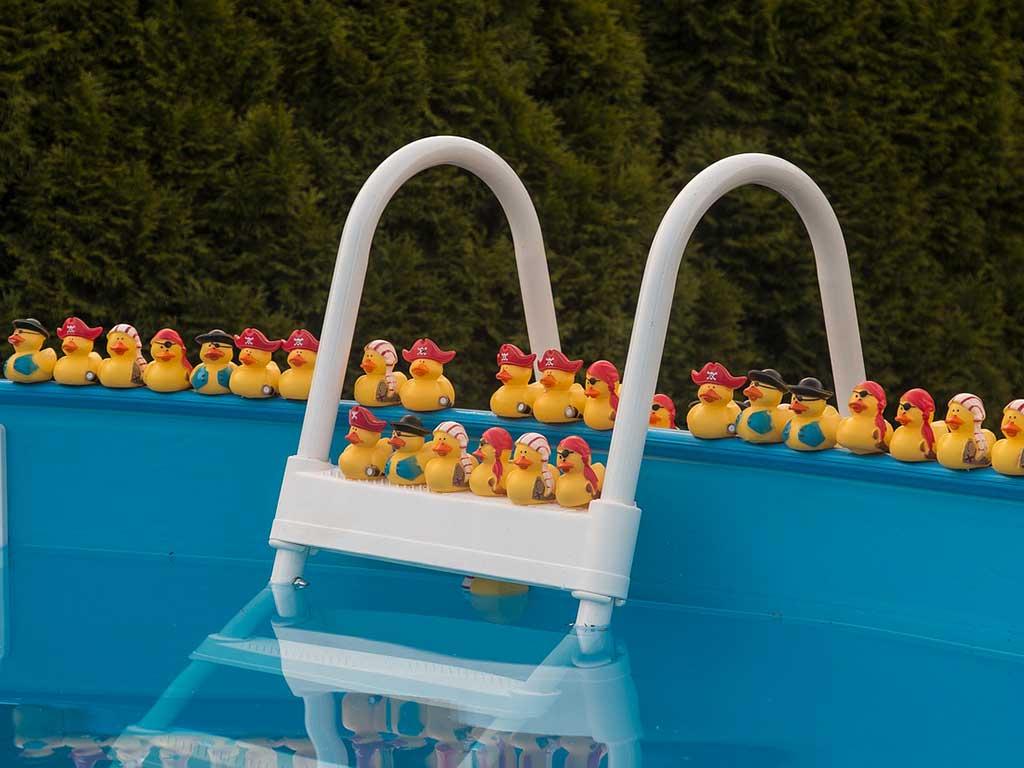 piscina fuoriterra con paperelle plastica sul bordo
