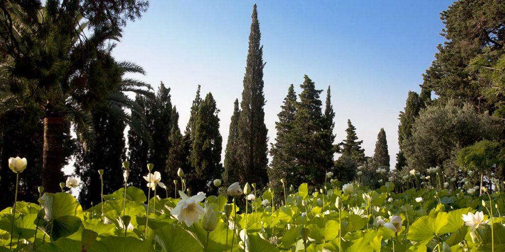 villa pergola giardini