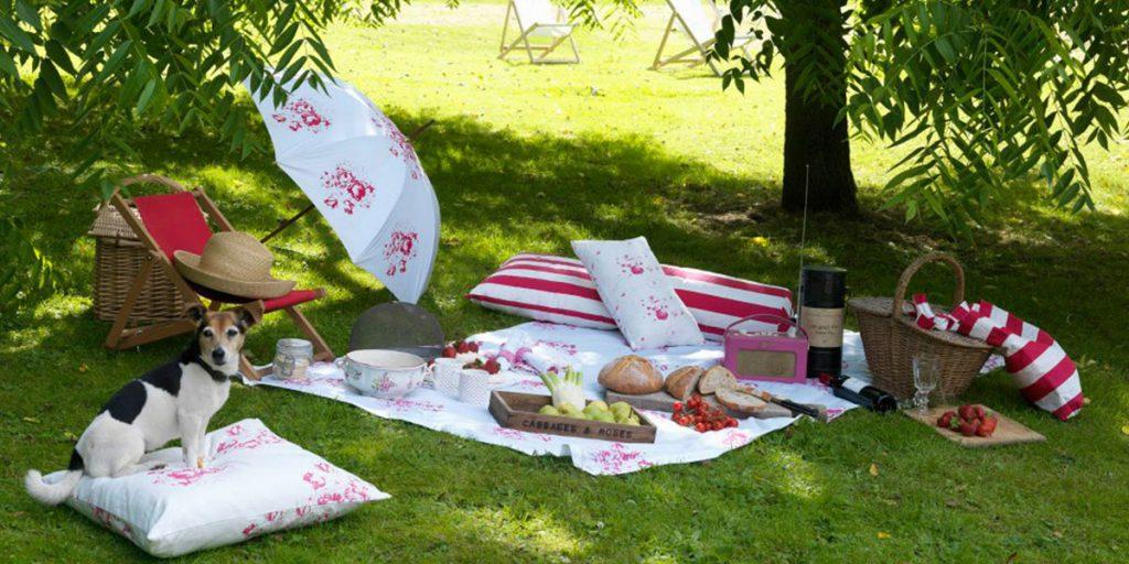 accessori picnic