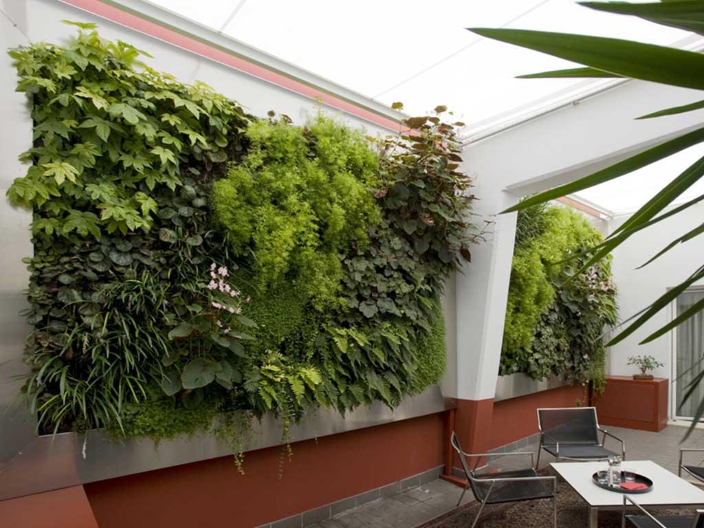 giardino verticale interno casa