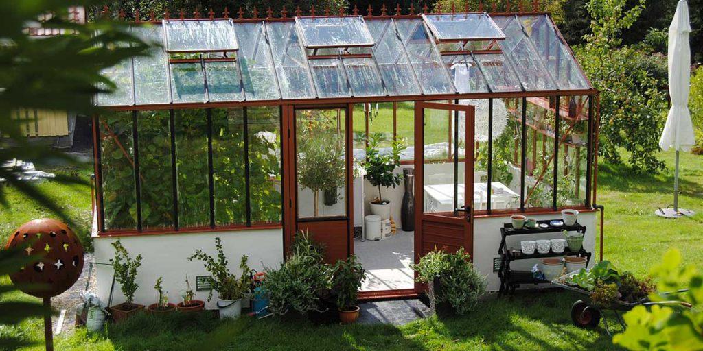 piante protezione freddo