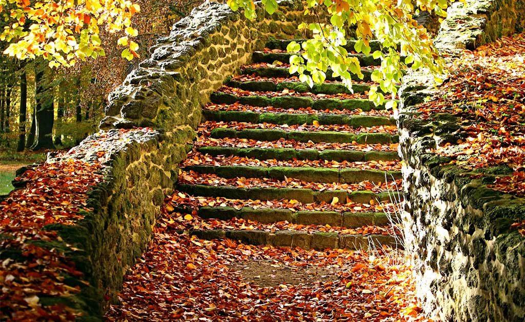 scalinata foglie autunno giardino