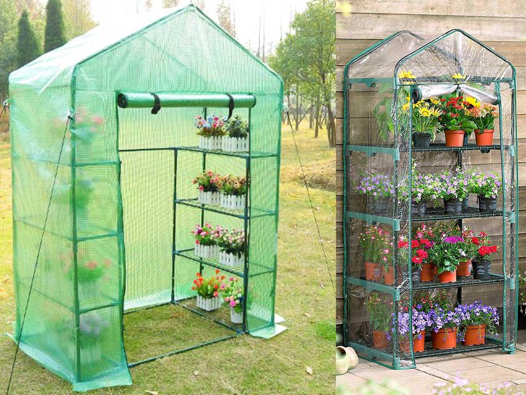 serra da giardino per piante