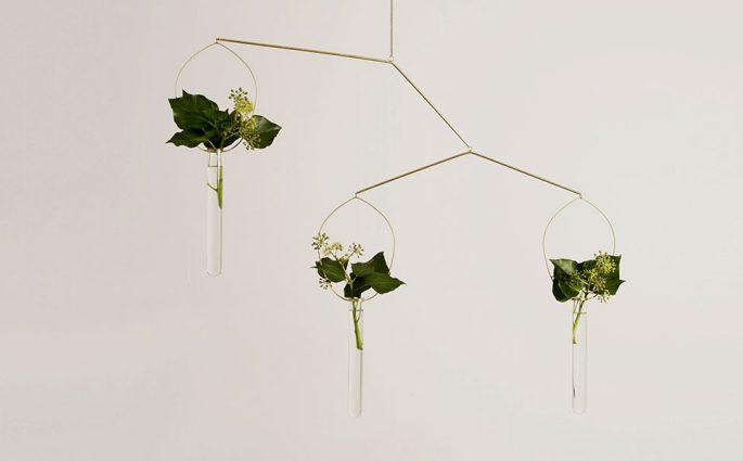 vasi piante design