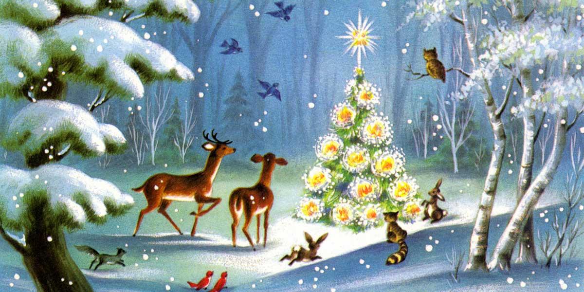 Cartoline Di Natale Immagini.Buon Natale La Nostra Cartolina Degli Auguri La Casa In