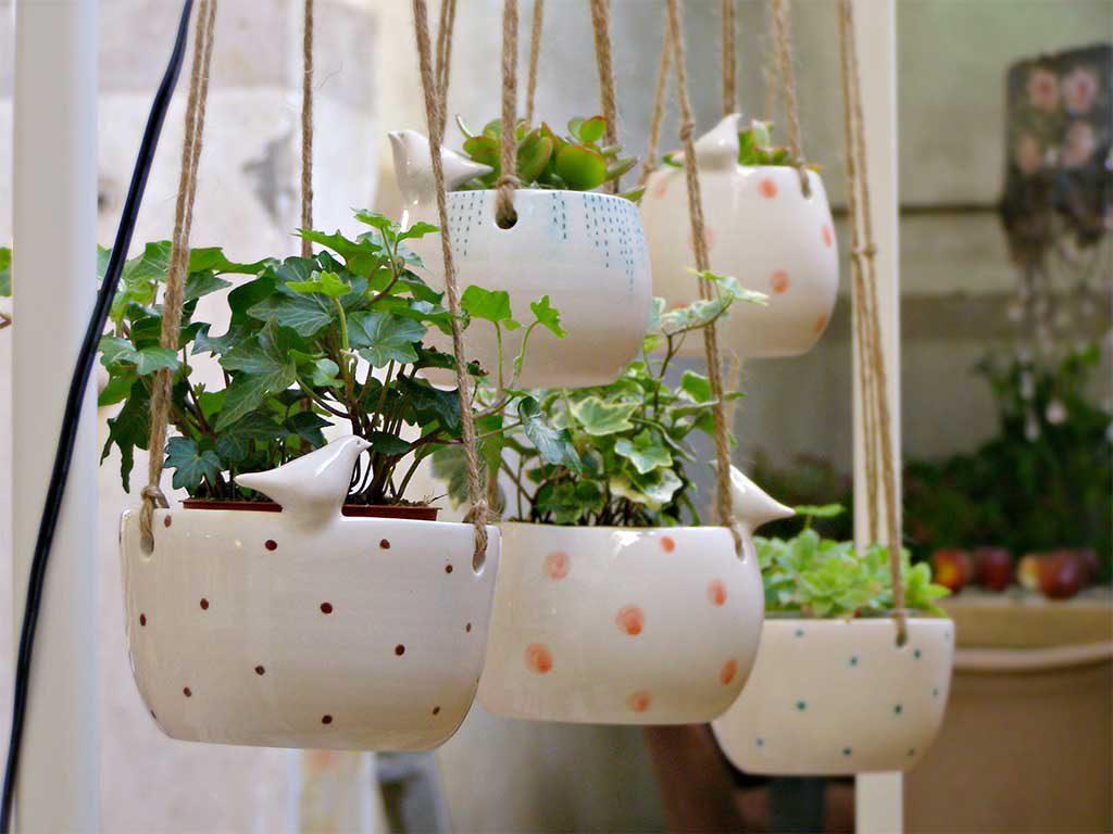 vasi ceramica piante