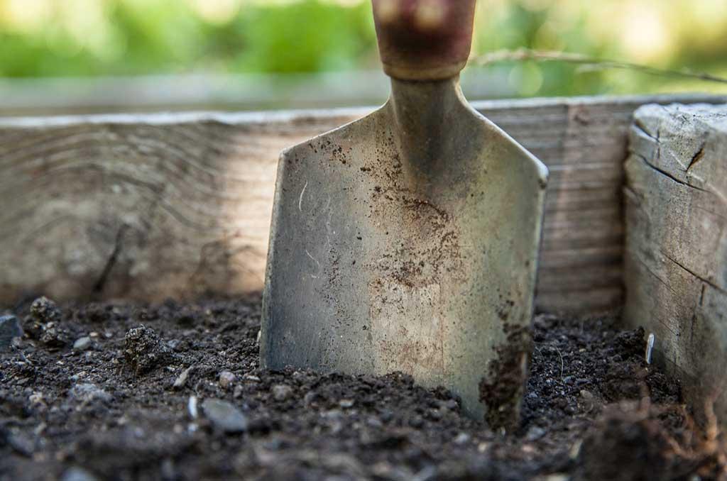 concimare piante terrazzo