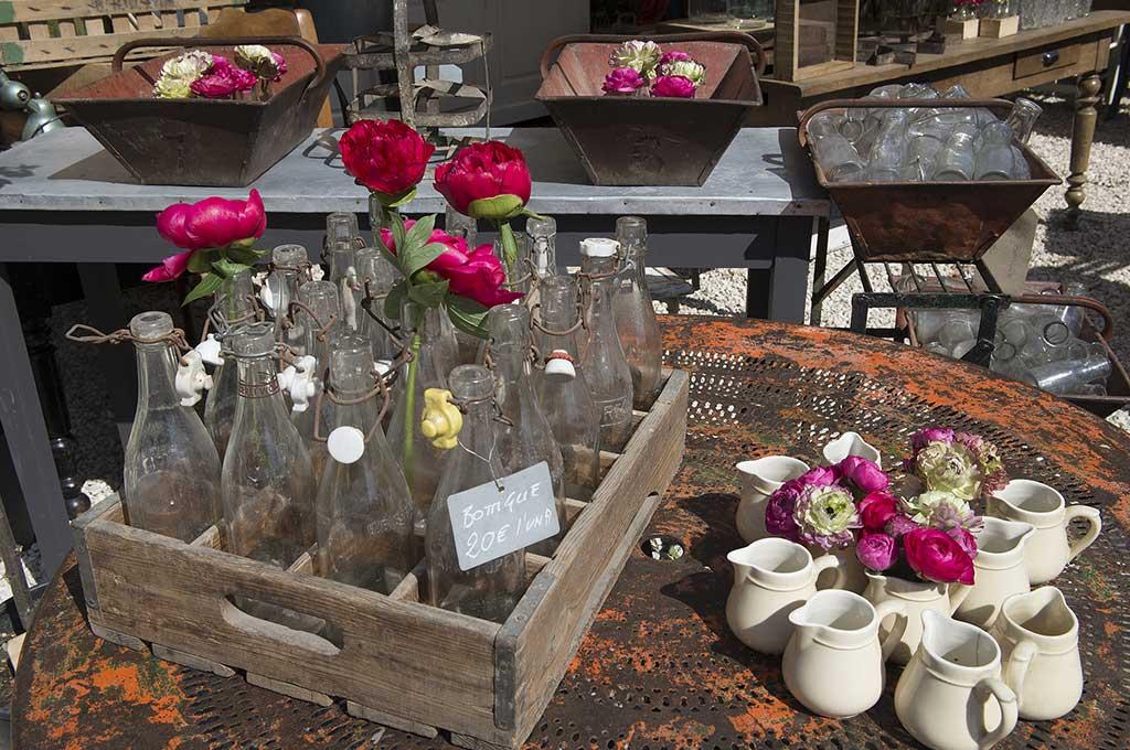piante e fiori casa