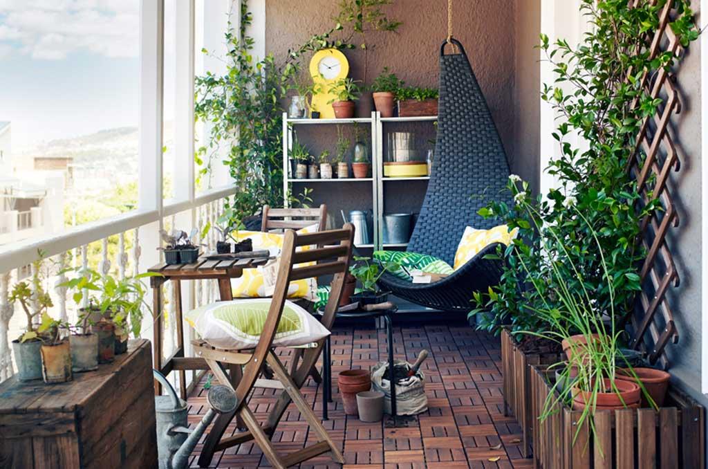 Come concimare le piante in terrazzo la casa in ordine for Piante da terrazzo
