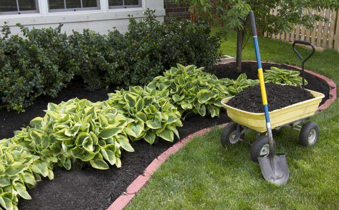 concime giardino fai da te