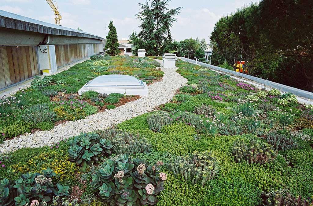 tetto con verde su pavimento