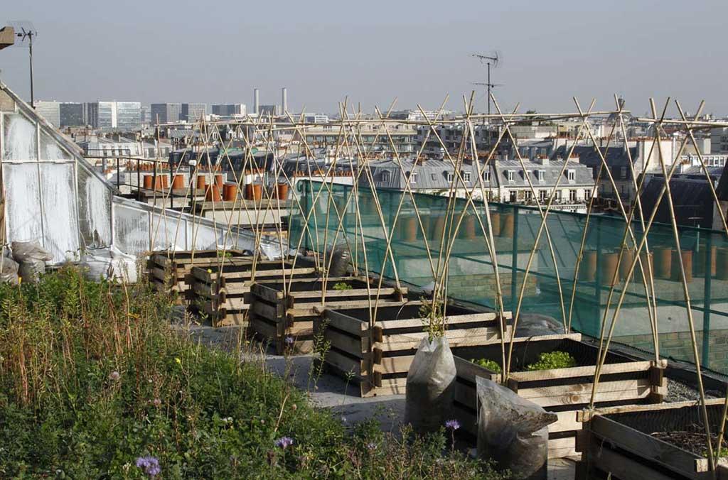 vasche per orto sul terrazzo
