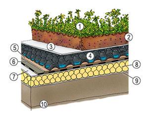 grafico stratigrafia tetto verde
