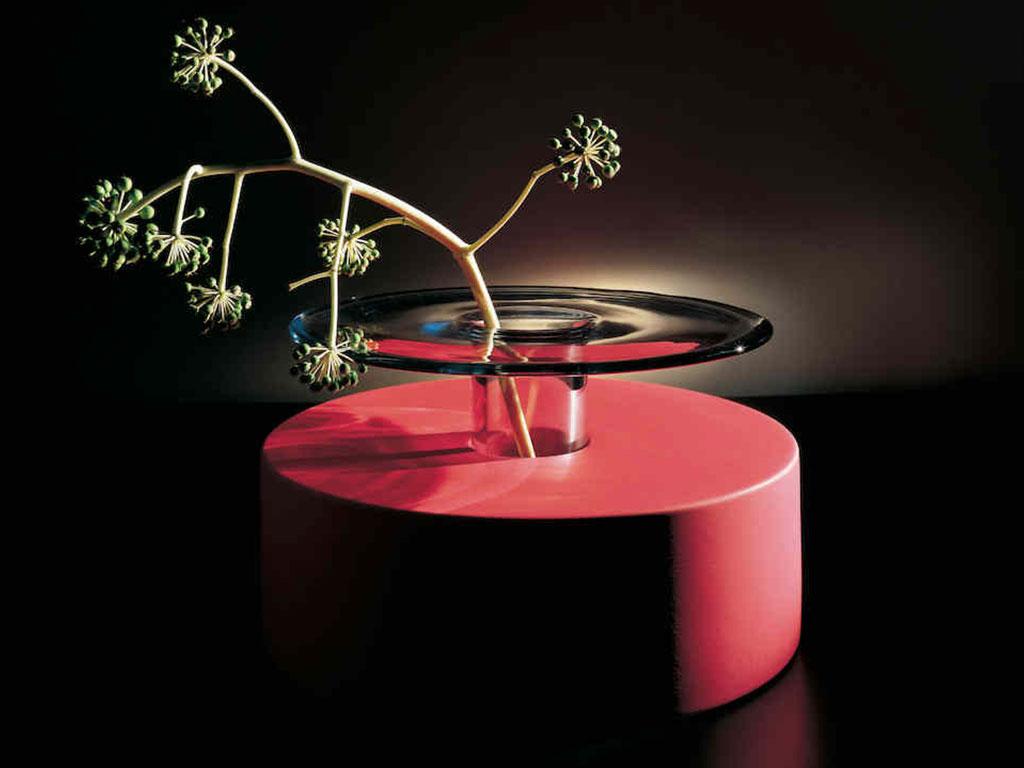vaso rosso di vetro con pianta