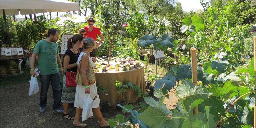 mercatino piante e fiori