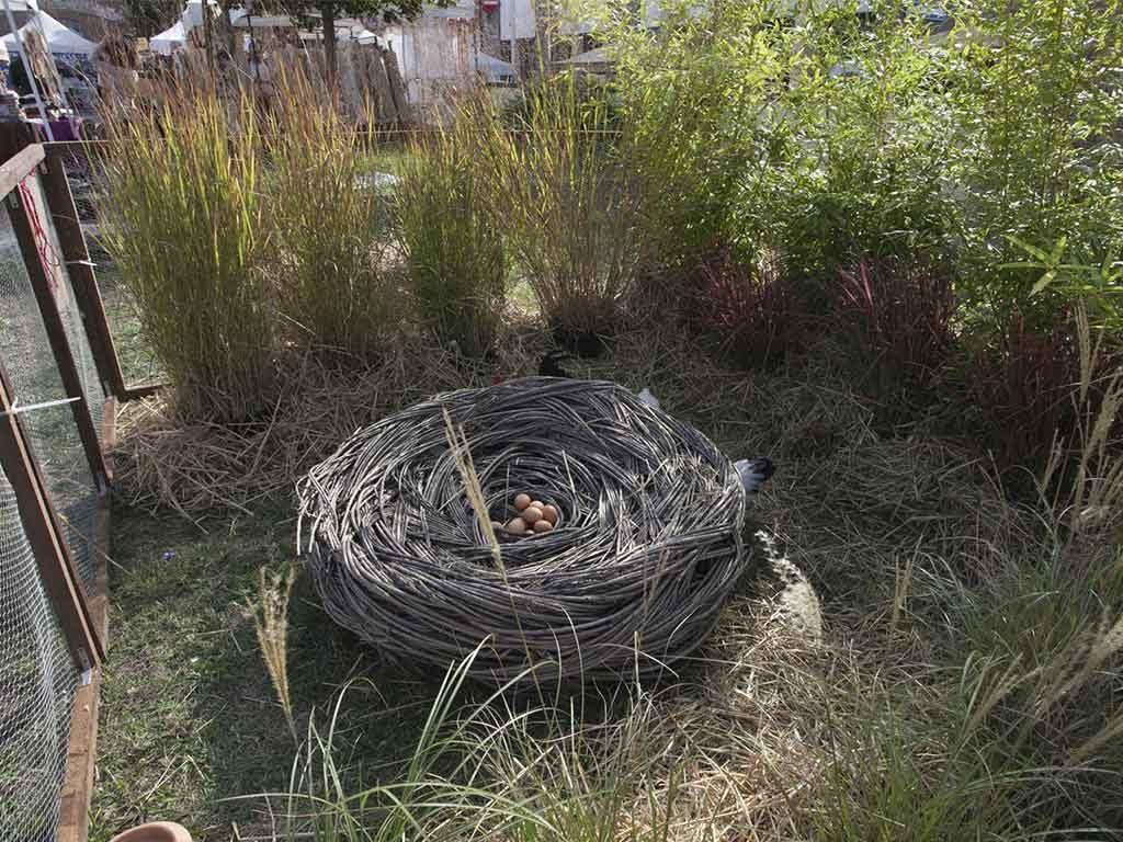 nido con ramoscelli e uova interno