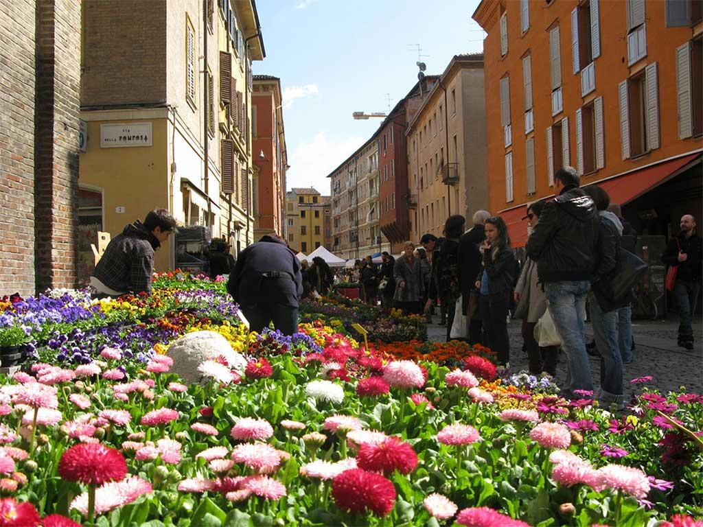 strade modena evento greeen piante