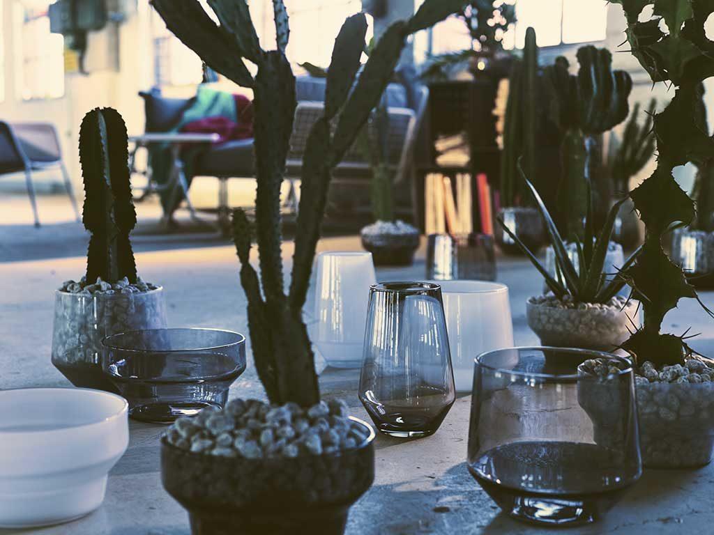 vasi vetro piante grasse esterno