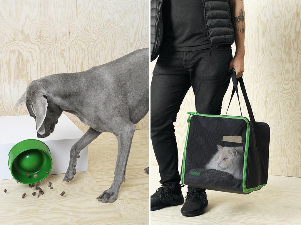 ciotola cane e trasportino gatto