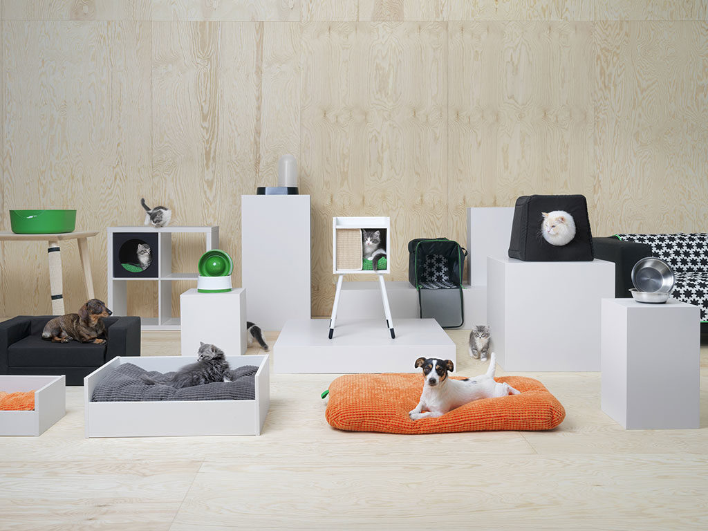 cani e gatti casa mobili cuscini