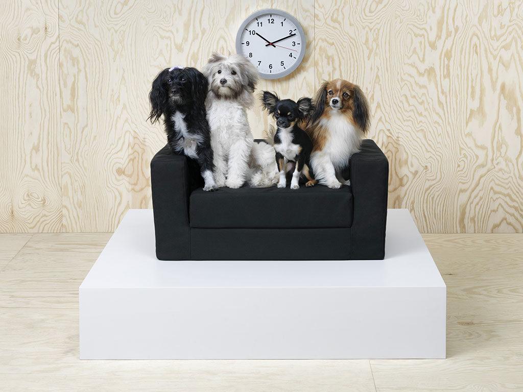 divano mini nero cane ikea
