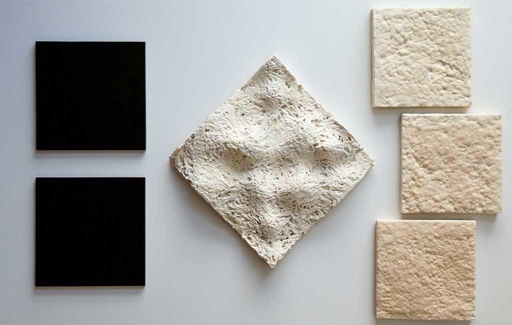 mattonelle fatte con funghi