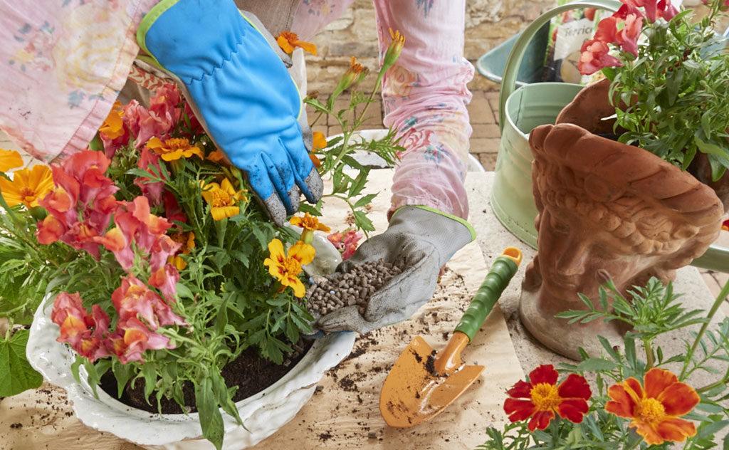 concime pellettato vasi fiori