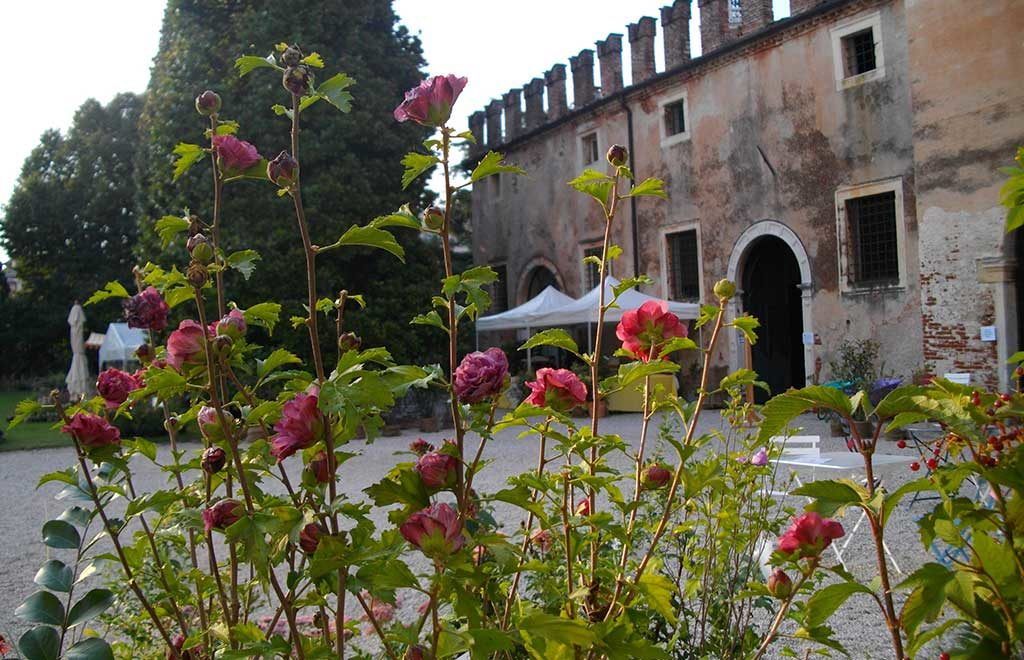 castello di thiene fiera verde