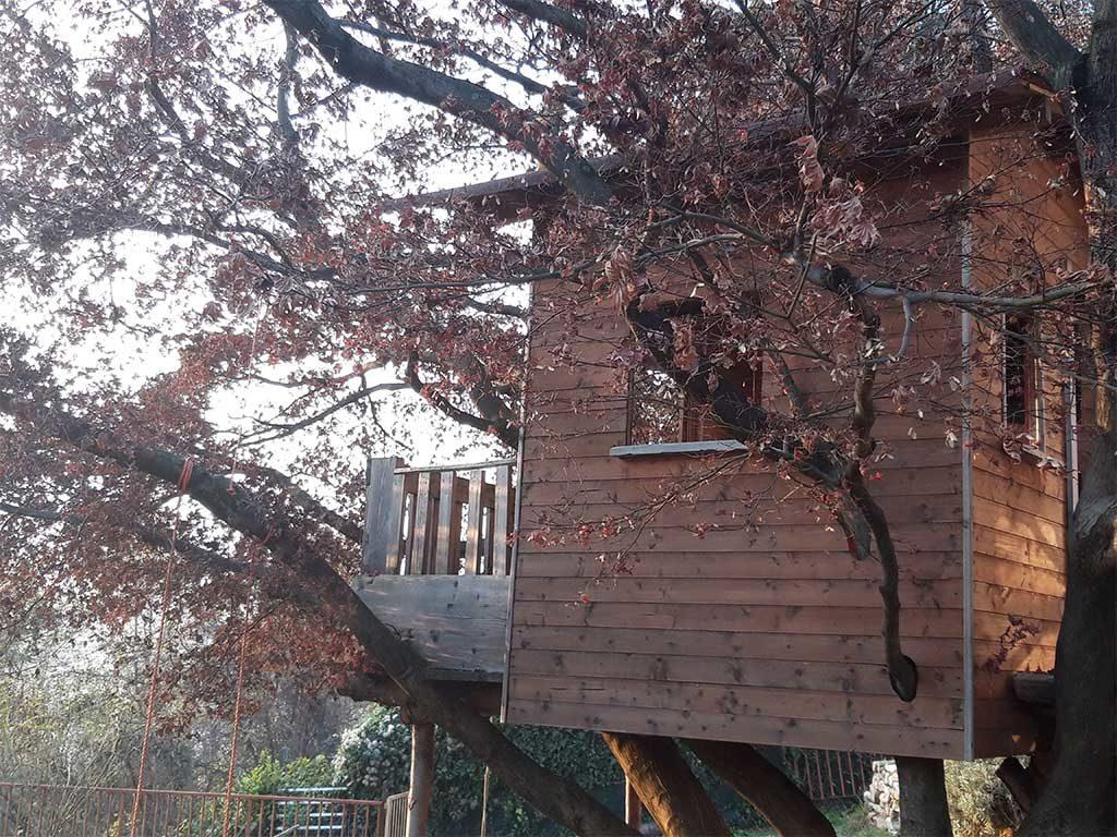 casetta albero legno rami