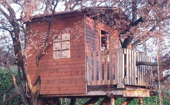 casa su albero legno