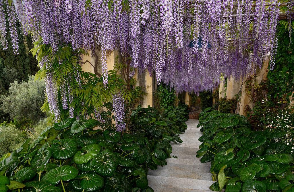 giardini villa la pergola