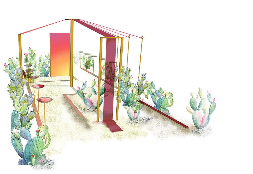 carmine catcher progetto verde
