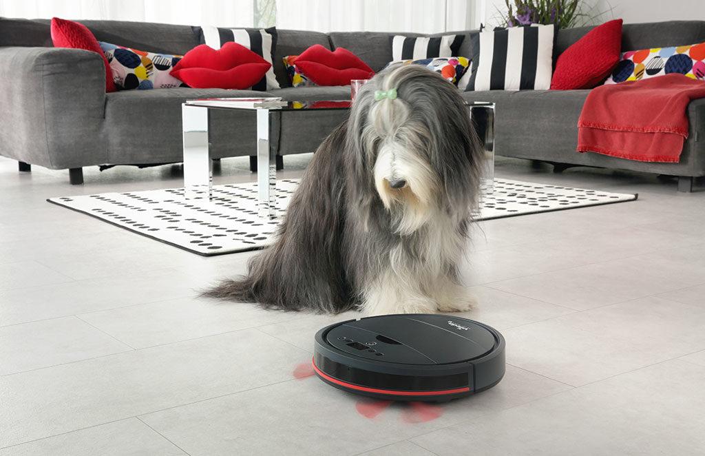 robot pulizie animal pro