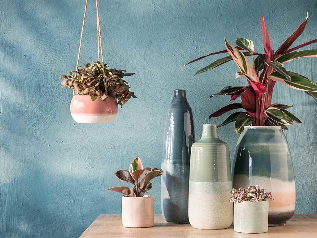 ceramiche colorate decorazione