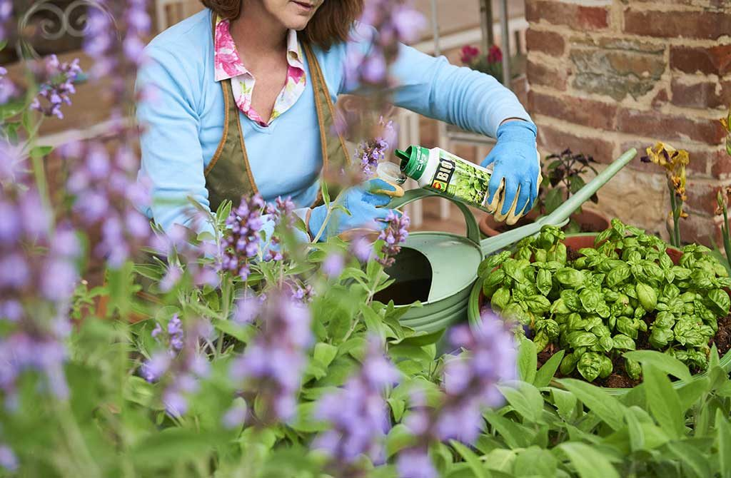 concime liquido giardino