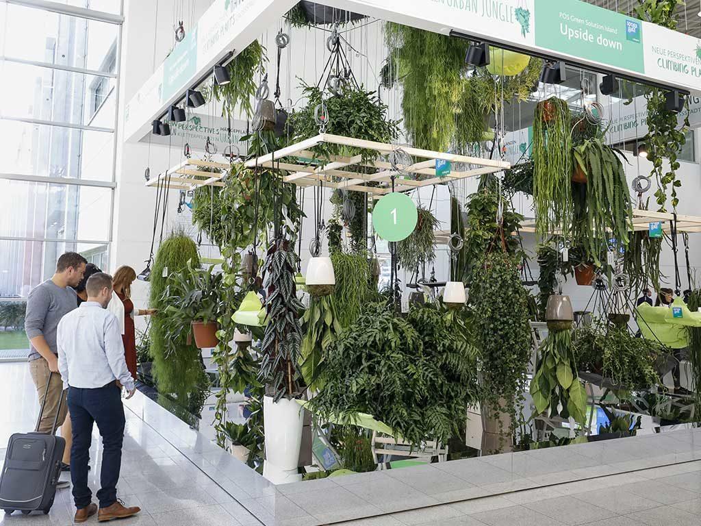 vasi sospesi piante
