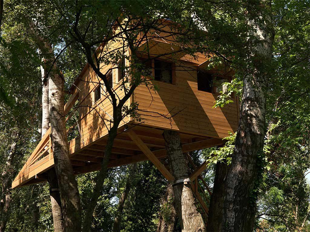 casa su albero