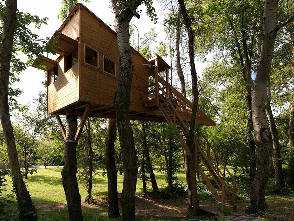 casa su albero vista lato