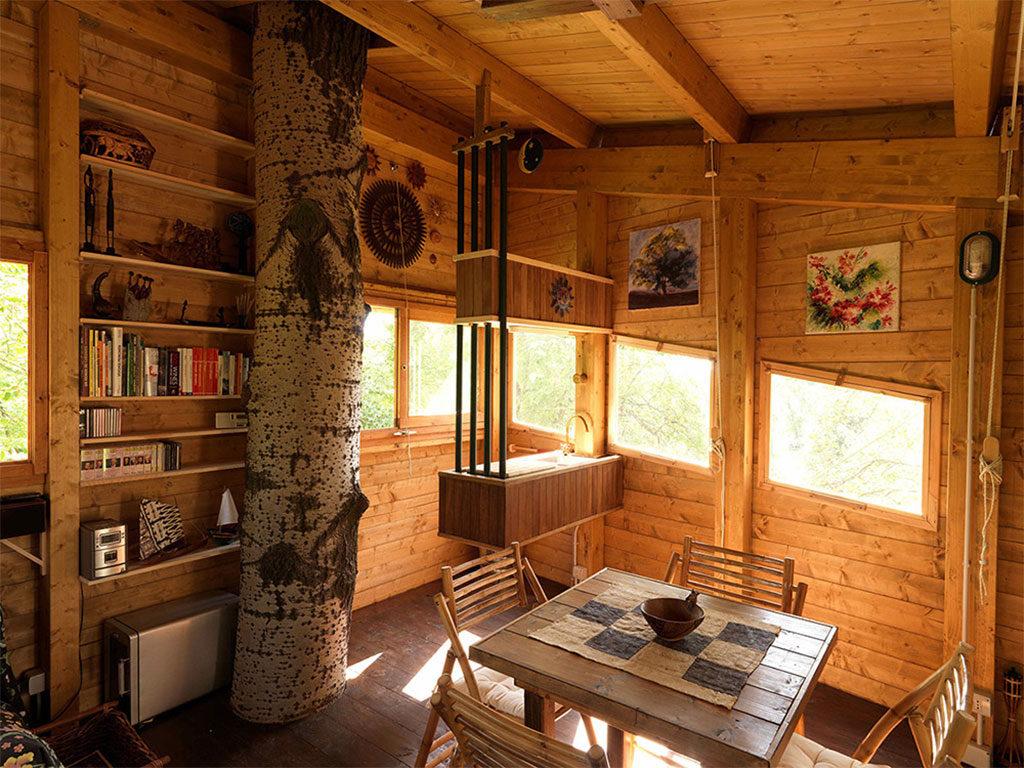 interno casa legno alberi