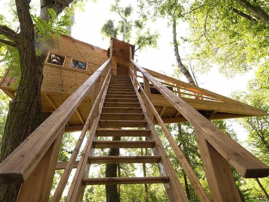 scala accesso casa legno albero