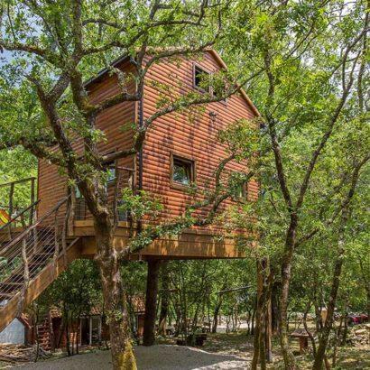 casa sopraelevata albero croazia vacanze
