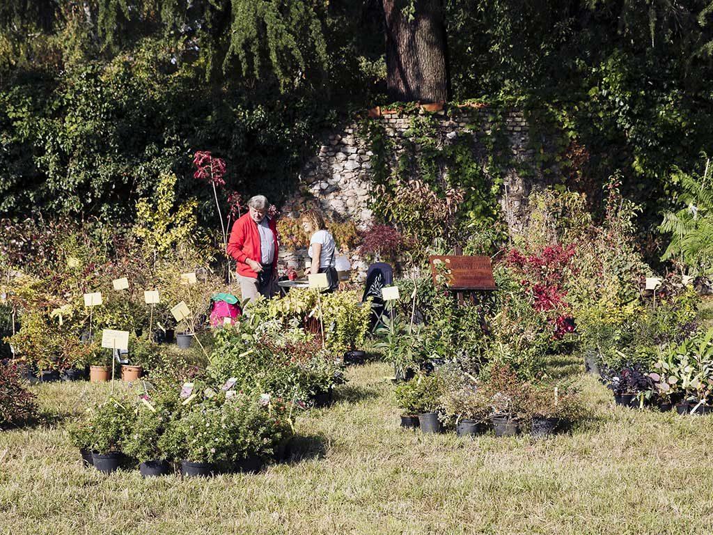 visitatori yougardener flower show 2019
