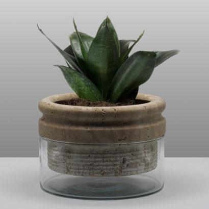 vaso marmo vetro pianta interni