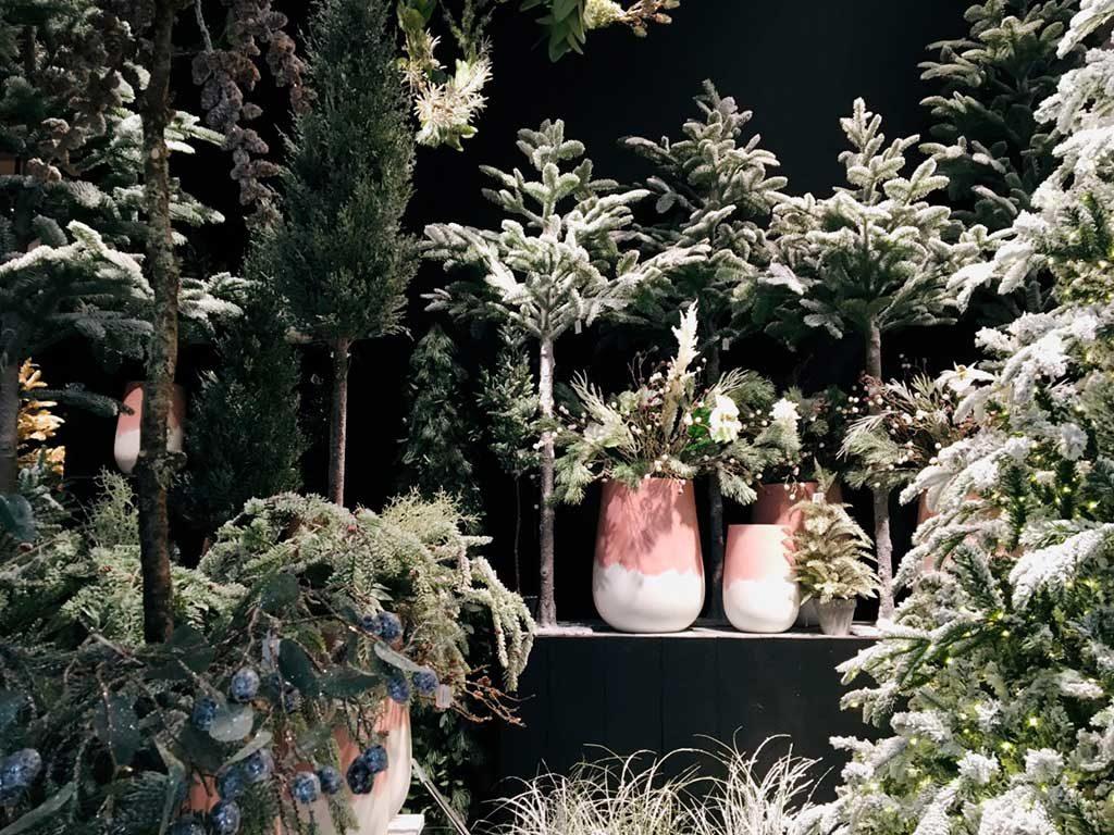 decorazione piante natale