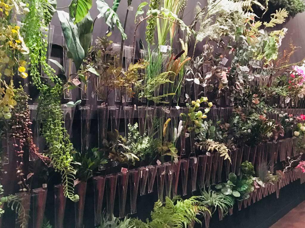 parete decorazione piante