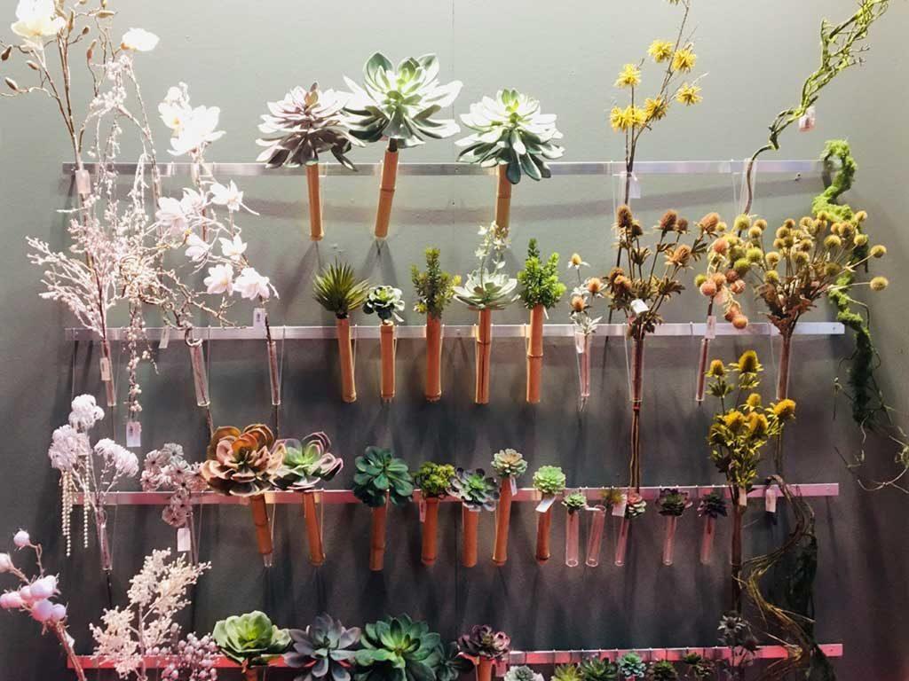 piante per centrotavola natale