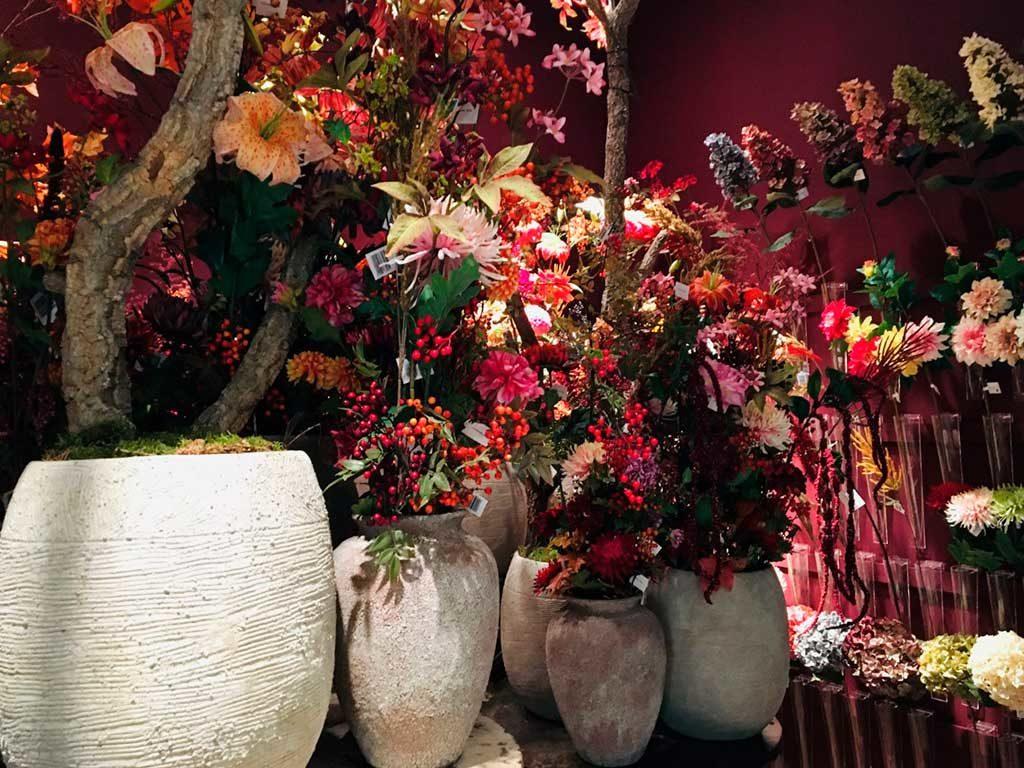 piante vaso per decorare natale