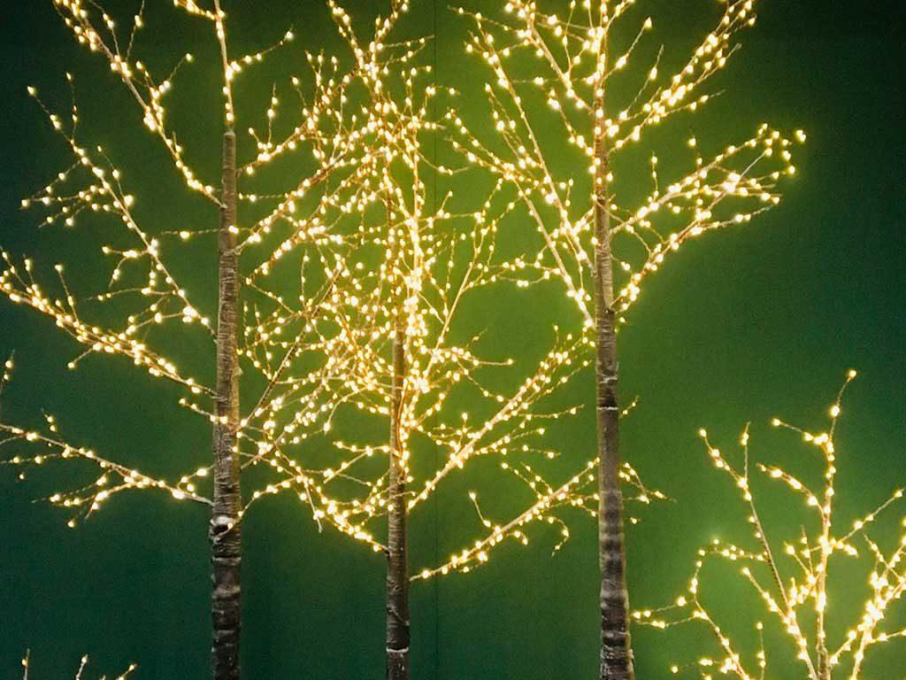 rami luminosi albero natale